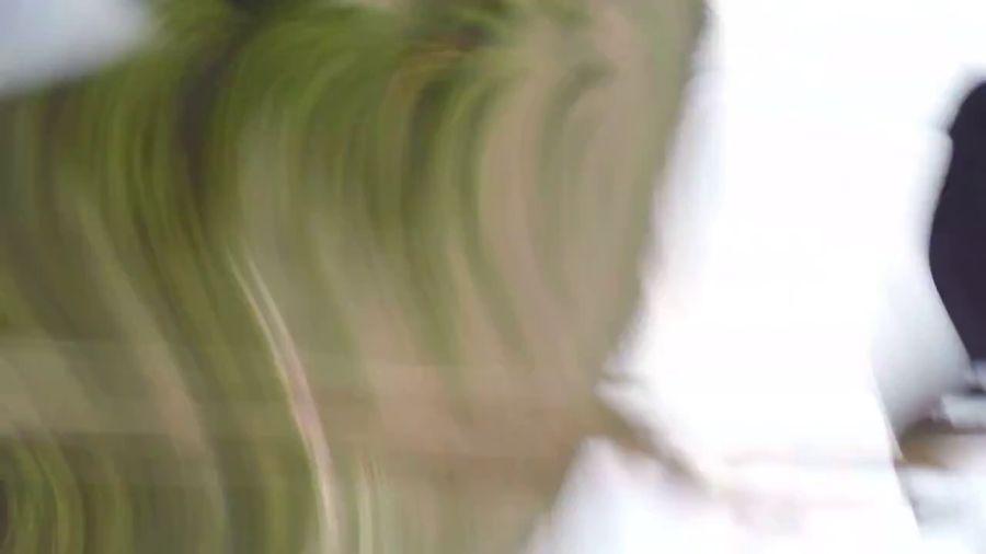 進擊的楔尾鵰(三)