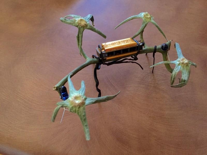 Organic Vegan Quad Copter Drone