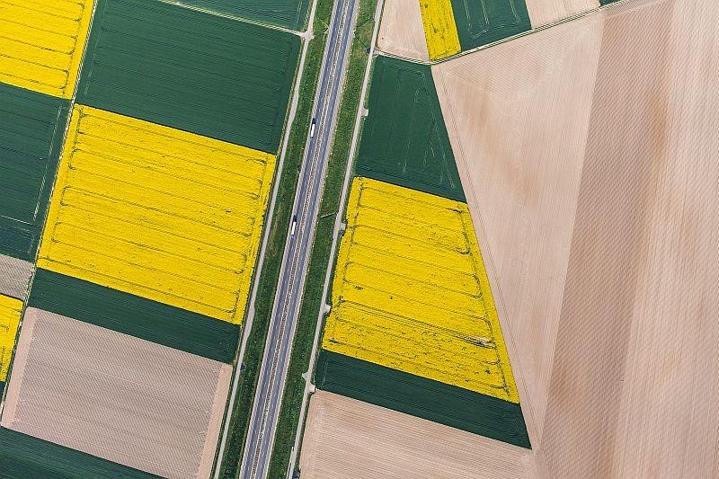 從高空拍攝農田的鳥瞰圖,一片片田顏色分明。(圖片來源:ShutterStock.com)