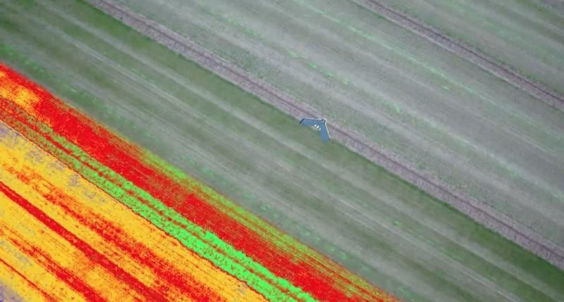 配備 Sequoia 的無人機能偵測大範圍農田。