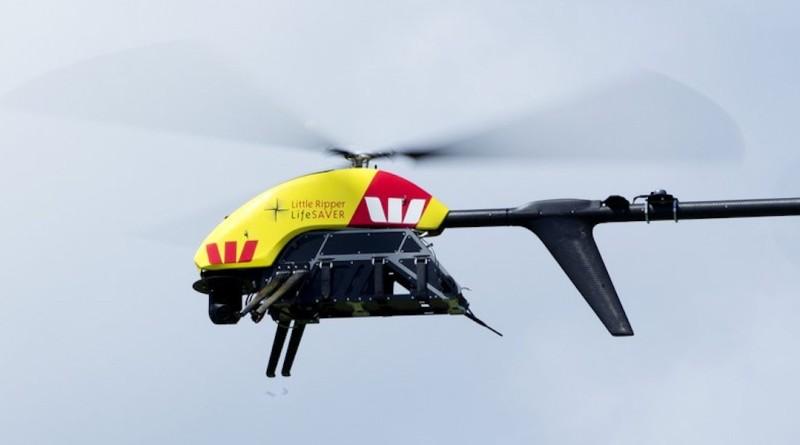 無人機 救生 鯊魚