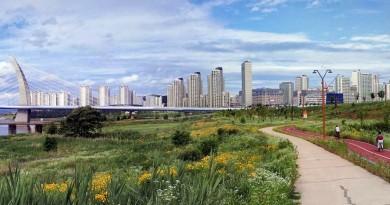韓國興建無人機公園 大幅放寬業界限制