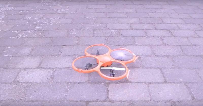 無人機亦要從蝙蝠身上偷師,學習飛行的特別技巧。