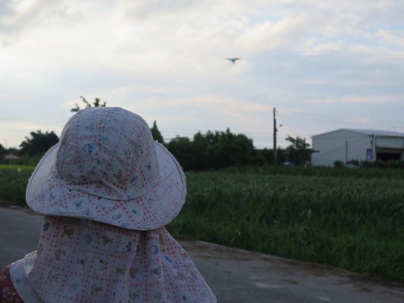 阿嬤用空拍機趕走田野上的雀鳥。