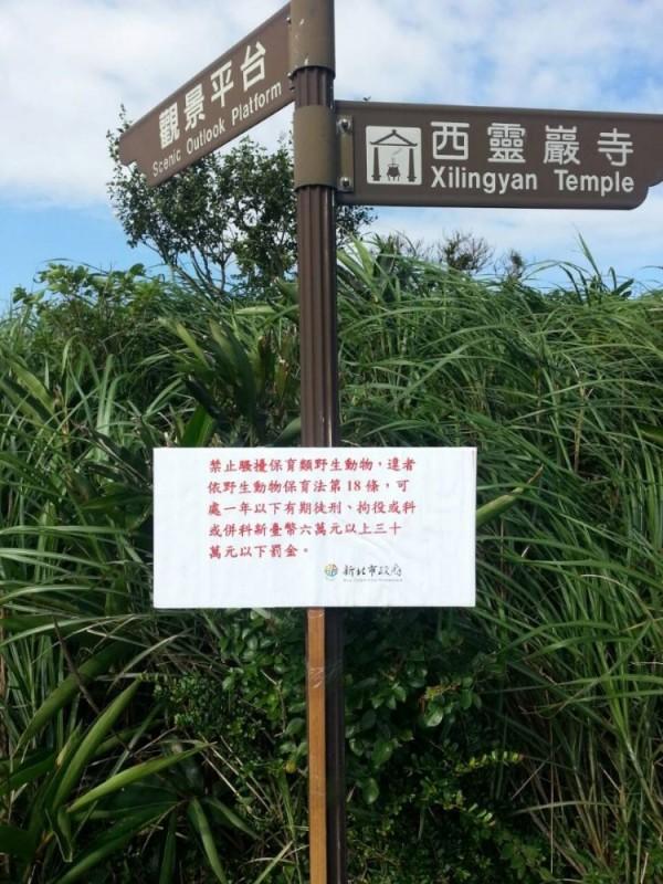 台灣龍洞岩場豎立警告牌,禁止滋擾野生動物