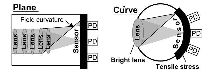 圖左為一般的平面感光元件,圖右則為 Nikon 的曲面感光元件。