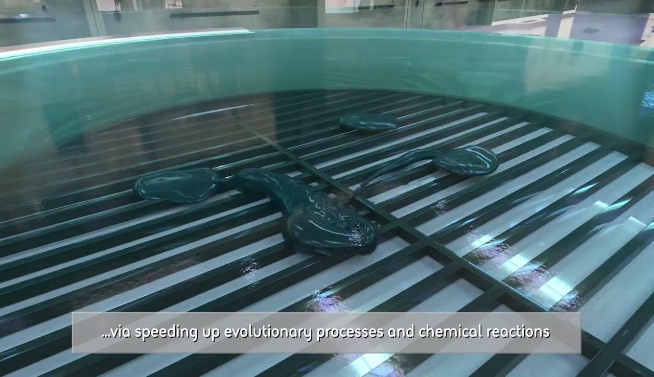 跟著注入液體,啟動培育缸,令物料的分子結構產生化學反應。