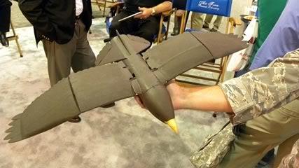 美國空軍在 2010 年發表的鷹形無人機