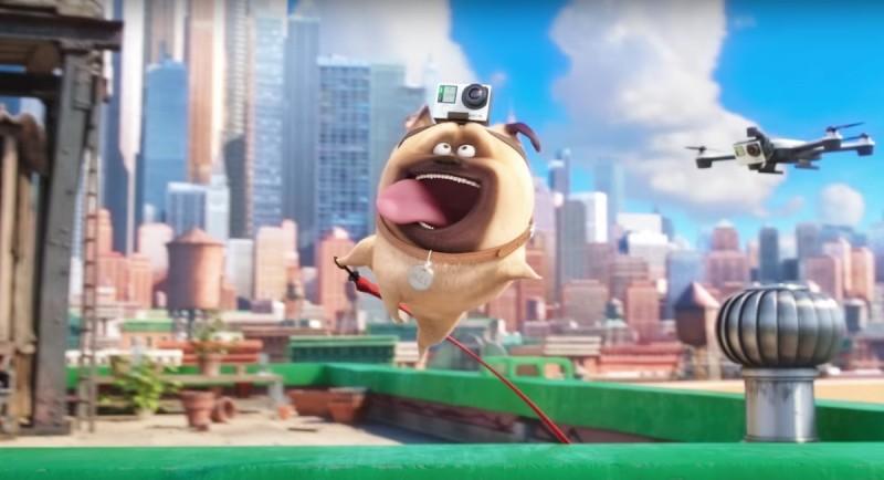 《Pet Pet 當家(寵物當家)》的預告片中出現裝上 Hero 4 的空拍機。