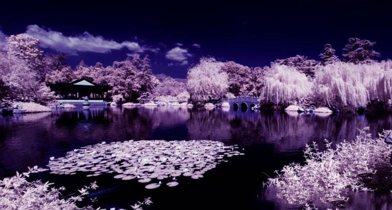 圖中的正是 PowerEye 空拍機的紅外線攝影效果,畫面中影像會變成如下雪般的白濛濛景色。