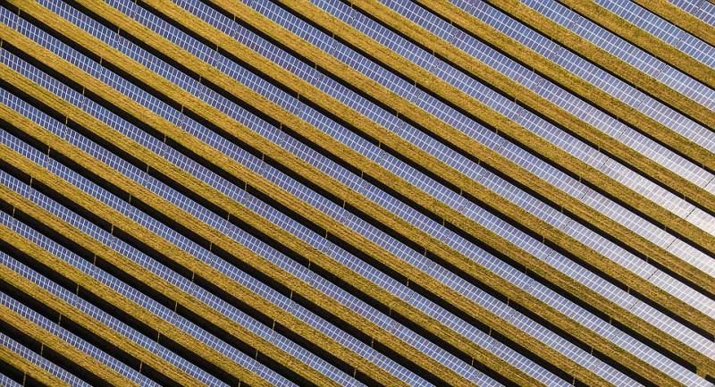 鋪滿太陽能板的農場,圖案令人眩目。