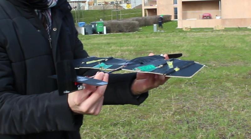受甲蟲啟發的摺疊定翼設計