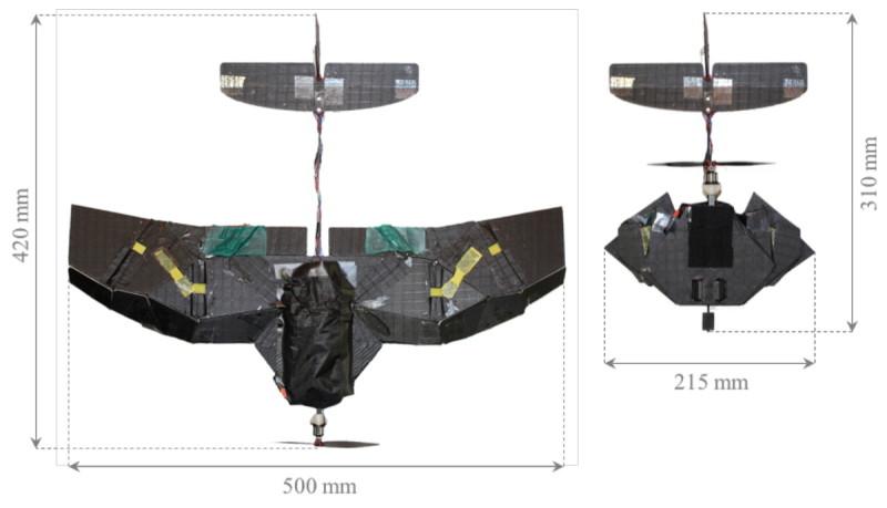 甲蟲啟發折疊定翼無人機