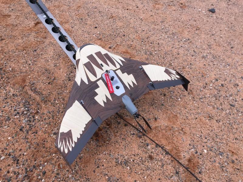 偽裝成幼鷹的無人機(Rick Steven 照片)