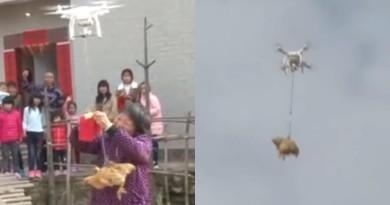 最潮岳母用無人機回禮 活母雞「飛」800 米安全抵步