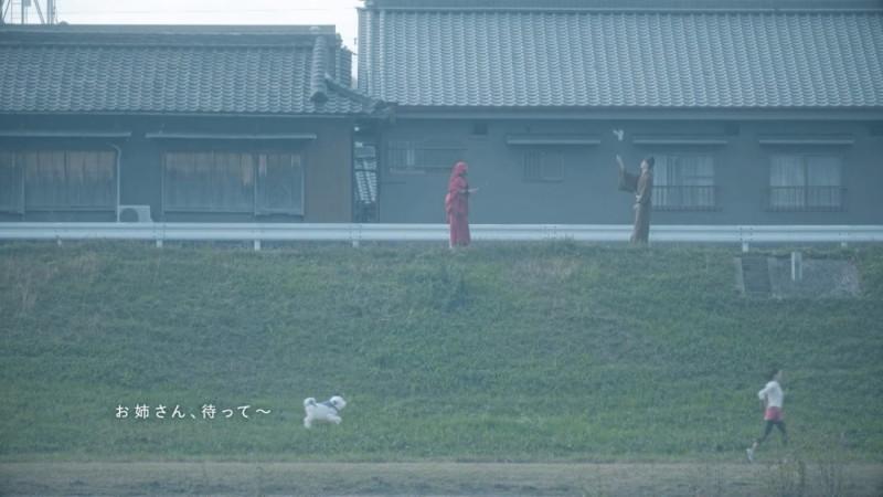 日本奈良縣王寺雪丸無人機 - 大和川