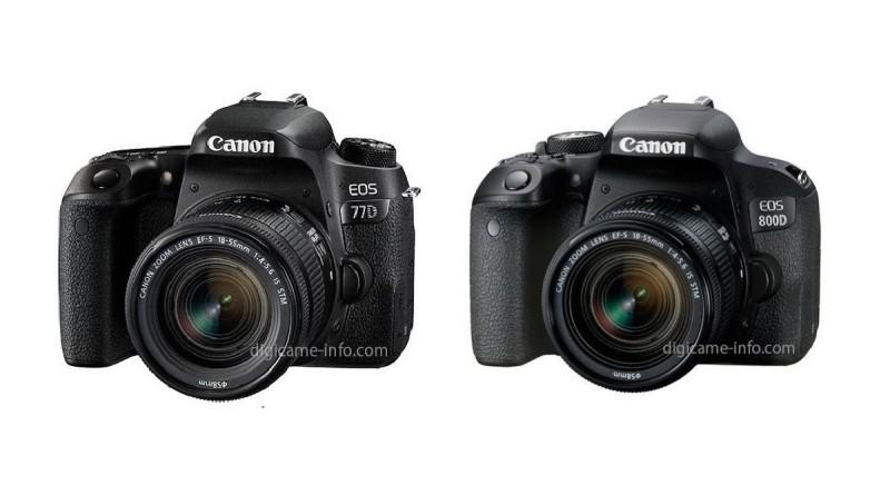 Canon EOS 77D。800D 入門單眼雙雄