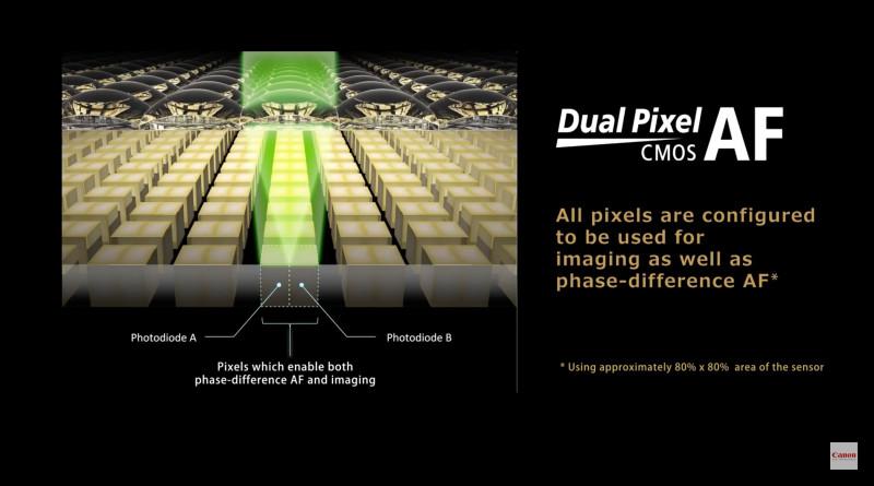 有消息指,Canon EOS 6D Mark II 或會追加雙像素 CMOS 自動對焦技術(Dual Pixel AF)功能。