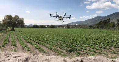 航拍機可用來施肥? 墨西哥公司改裝無人機務農 減省耕作成本