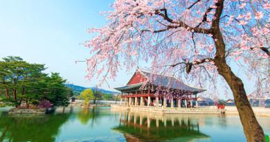 韓國首次起用無人機送貨 快遞商用化延至 2022 年